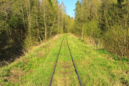 Old abandoned railway line through the forest photo