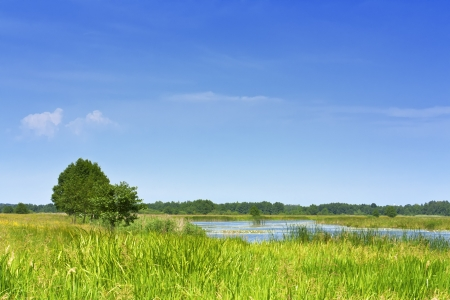 lake on a green meadow against the blue sky Stock Photo