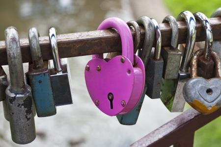 Rose en forme de coeur de blocage entre les écluses d'autres Banque d'images - 14897222
