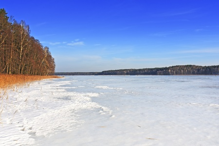 Frozen lake covered with snow, the forest in the background and blue sky Stock Photo - 17358816