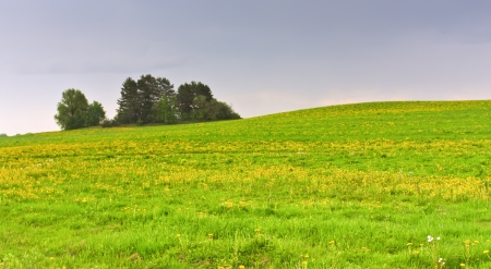 horisontal: Green field and trees on the hill landscape horisontal