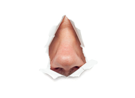 The human nose sticks out through a hole in paper isolated
