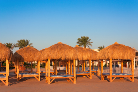 loungers: Loungers to relax on the beach of the Red Sea