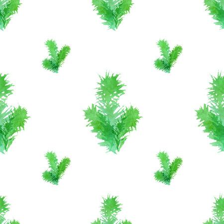 arbre     ? � feuillage persistant: branches d'arbres � feuilles persistantes Aquarelle sur fond blanc. Vector illustration.