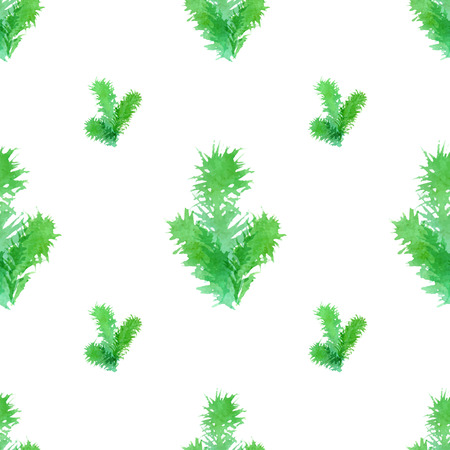 pine boughs: Watercolour branches of evergreen tree on white background. Vector illustration.