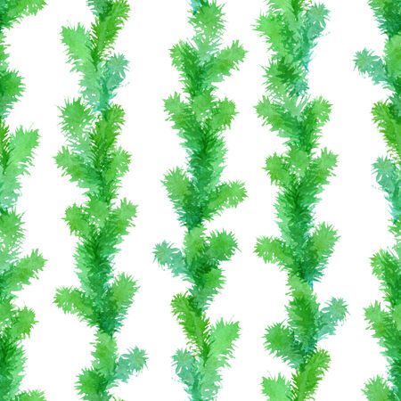 pine boughs: Watercolor branches of Christmas tree on white background. Vector illustration.
