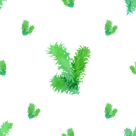 pine boughs: Watercolor branches of evergreen tree on white background. Vector illustration.