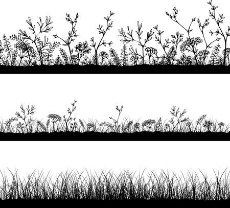 silhouette fleur: Trois modèles horizontaux d'herbe. Silhouettes noires sur fond blanc. Facile à modifier.