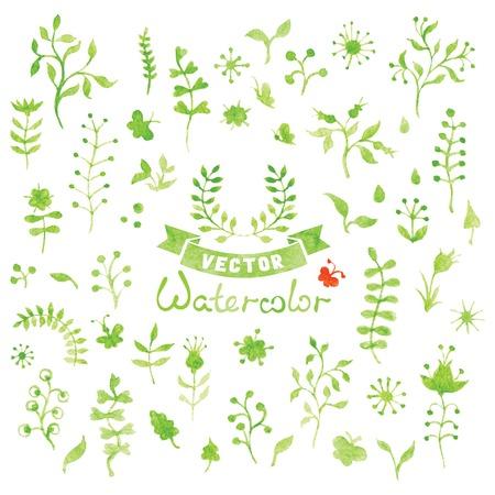 elements of nature: Set of vector watercolor nature elements