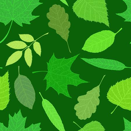Veined green leaves on dark background. Vector