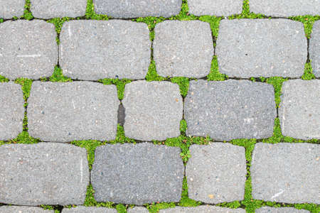 Cobblestones overgrown with grass. The grass grows through the stones of the paving stones.