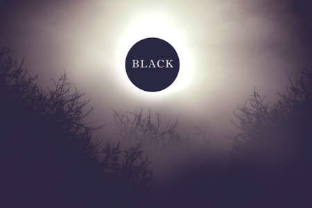 The sun shines through the black sky against the background of dark trees. Black metal cover. Dark photo of the sun.