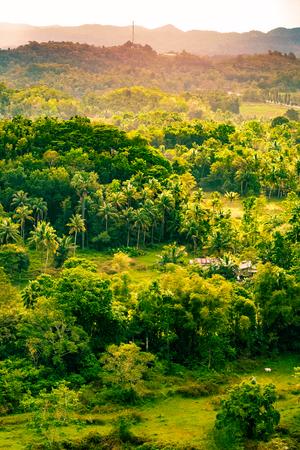 Portrait landscape view of green land Stock Photo