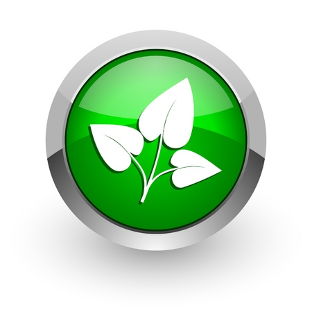 plant icon Stock Photo - 14471682