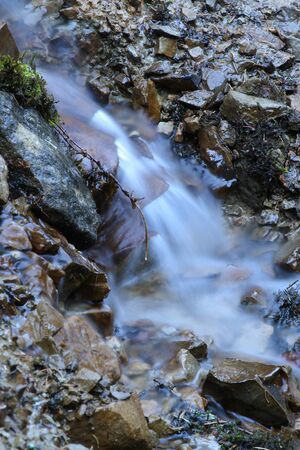 garden of eden: mountain stream