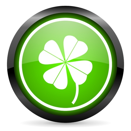 four-leaf clover green glossy icon on white background Stock Photo - 16955324
