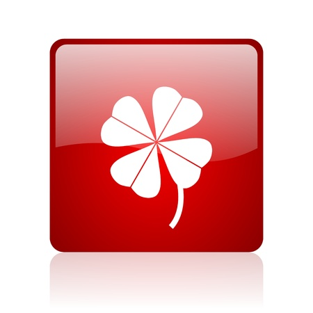fourleaf: four-leaf clover red square glossy web icon on white background