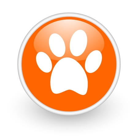 animal orange circle glossy web icon on white background Stock Photo - 17761174