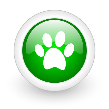 animal footprint green circle glossy web icon on white background