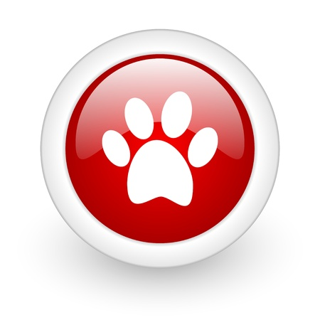 animal footprint red circle glossy web icon on white background Stock Photo - 17977786