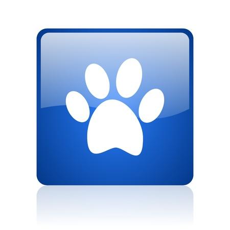 animal footprint blue square glossy web icon on white background Stock Photo - 18037085