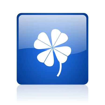 four-leaf clover blue square glossy web icon on white background  photo