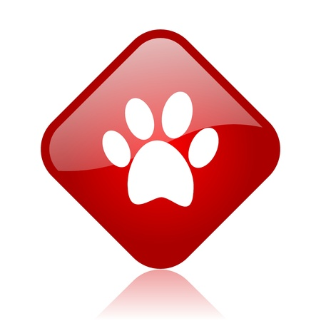 animal footprint red square glossy web icon  photo