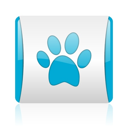 animal footprint blue and white square web glossy icon  photo