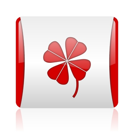four-leaf clover red and white square web glossy icon