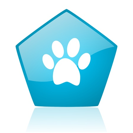 animal footprint blue pentagon web glossy icon