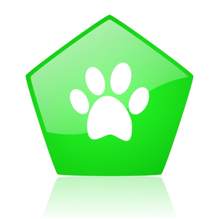 animal footprint green pentagon web glossy icon Stock Photo - 19227773