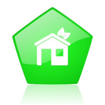 home green pentagon web glossy icon  photo