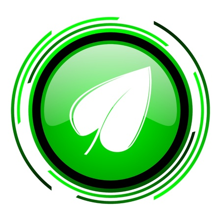 leaf green circle glossy icon  photo