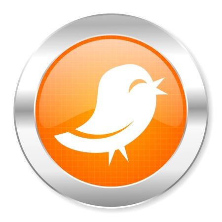 tweet icon: twitter icon