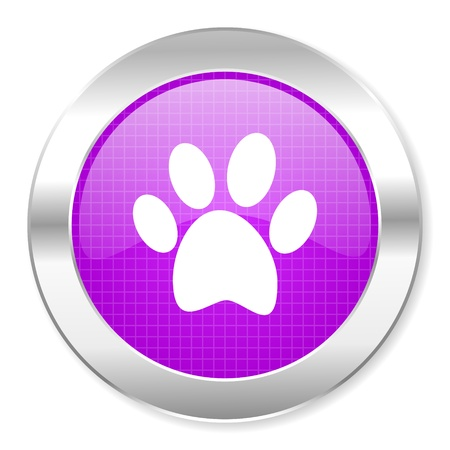 animal footprint icon  photo