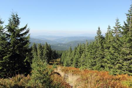 mountain trail photo