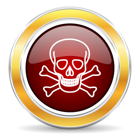 skull icon  photo