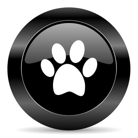 black circle web button on white background photo