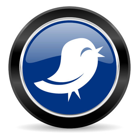 twitter: blue circle web button