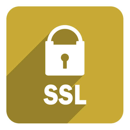 ssl flat icon photo