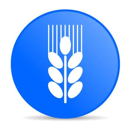 grain internet blue icon  photo