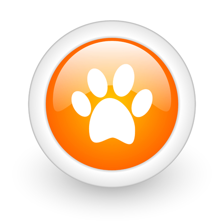 foot orange glossy web icon on white background  photo