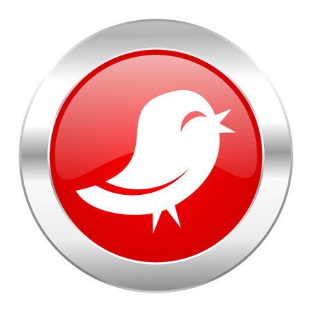 twitter red circle chrome web icon isolated photo