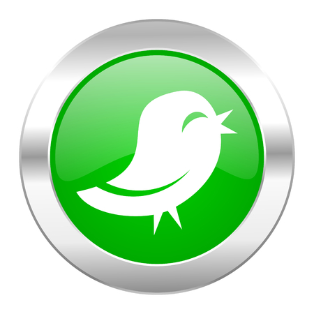 twitter green circle chrome web icon isolated