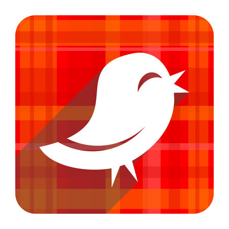 twitter red flat icon isolated photo