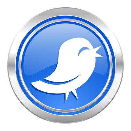 facebook: twitter icon, blue button Stock Photo