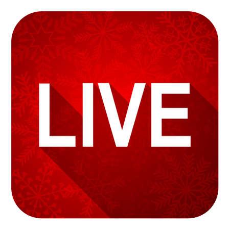 live flat icon, christmas button