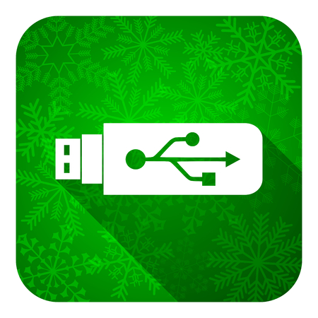 flash memory: usb flat icon, christmas button, flash memory sign Stock Photo