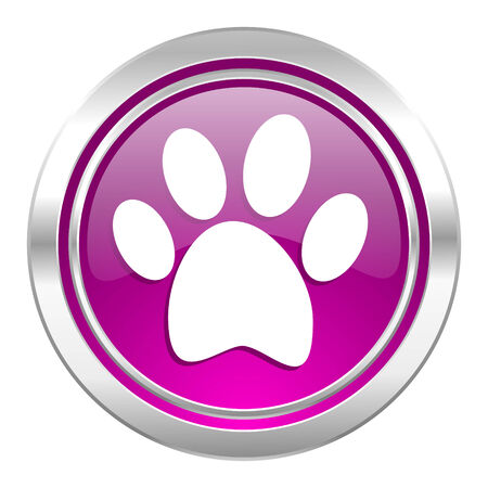 chase: foot violet icon