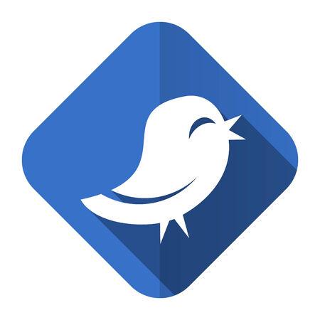twitter flat icon photo